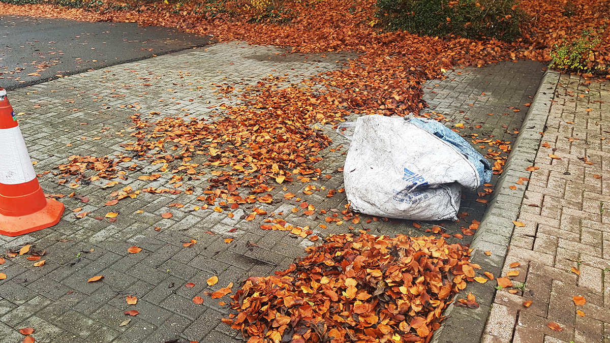 Carpark and rain leaf removal