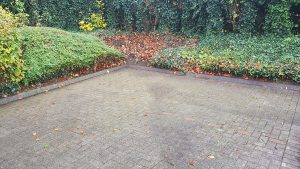 Carpark and rain leaf removal