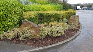 Hedge trimming Grounds Maintenance midlands