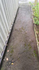 pavement moss removal